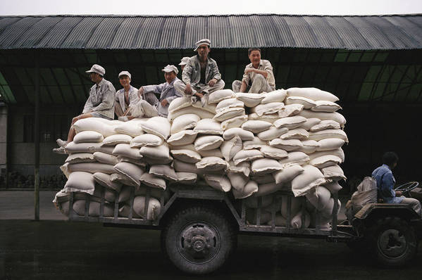 Medium Group Of People Art Print featuring the photograph Men Sit On Bags Of Flour by Justin Guariglia