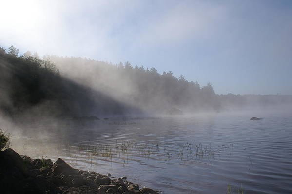 Mist Art Print featuring the photograph Mist On Lake by Eric Larue