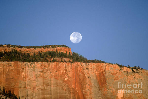 Zion National Park Art Print featuring the photograph Moonrise Over East Temple - Zion by Sandra Bronstein