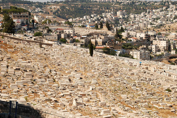Mount Of Olives Art Print featuring the digital art Mount Of Olives by Eva Kaufman