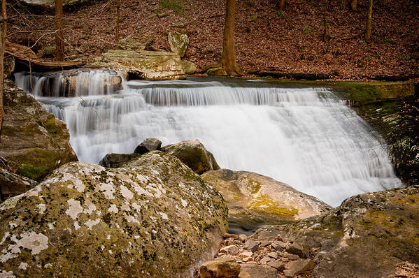 Water Art Print featuring the photograph Mountain Cascade by Marion Wear