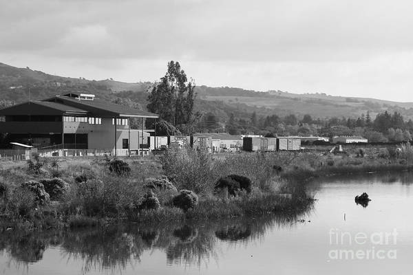 Black And White Art Print featuring the photograph Napa River In Napa California Wine Country . Black And White by Wingsdomain Art and Photography