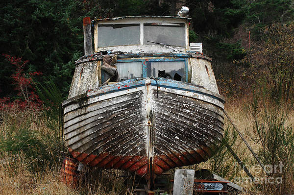 Fishing Boats Art Print featuring the photograph Needing Work by Bob Christopher