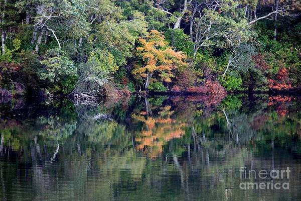 Fall Foliage Art Print featuring the photograph New England Fall Reflection by Carol Groenen
