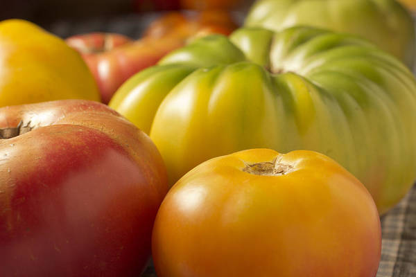 Horizontal Art Print featuring the photograph New Jersey Heirloom Tomatoes by Brian Yarvin