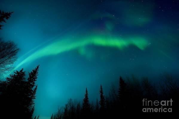 Lights Art Print featuring the photograph Northern Magic by Priska Wettstein