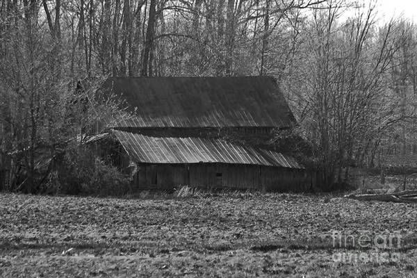Photograph Art Print featuring the photograph Old Barn Out Back by Brenda Carpenter