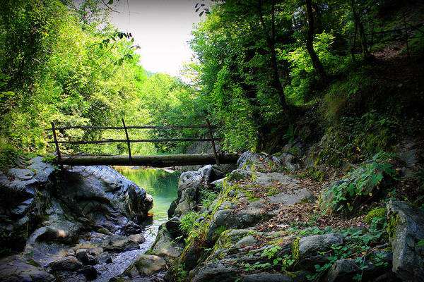 Bridge Print featuring the photograph Old Bridge In The Mountain by Radoslav Nedelchev