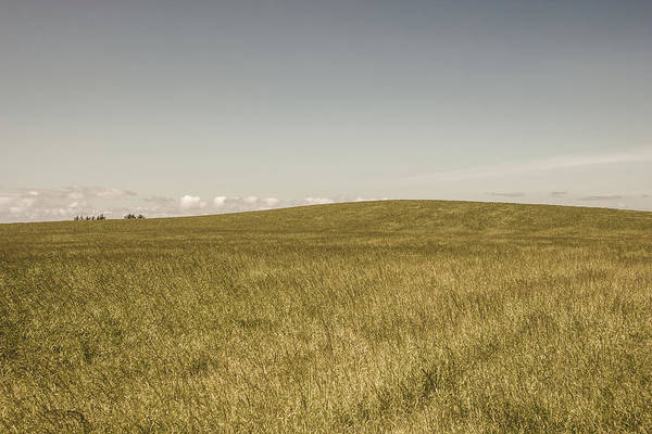 Horizontal Art Print featuring the photograph Pasture In Bryne, Norway by Sindre Ellingsen