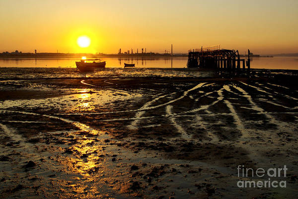 Algae Art Print featuring the photograph Pier At Sunset by Carlos Caetano