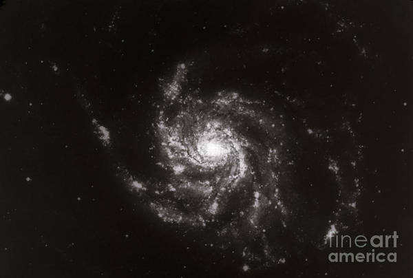 Galaxies Art Print featuring the photograph Pinwheel Galaxy, M101 by Science Source