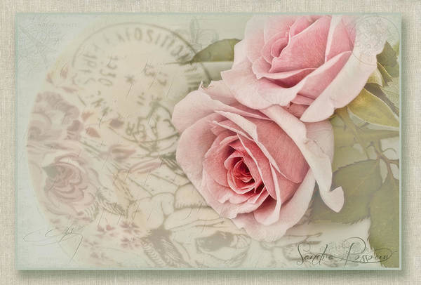 Pink Art Print featuring the photograph Posted by Sandra Rossouw