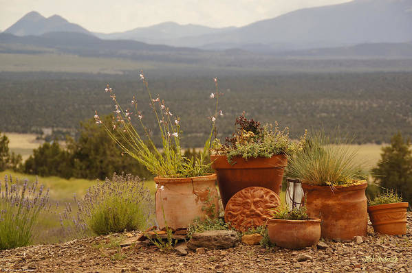 Pots Art Print featuring the photograph Pots And Vista by Mick Anderson