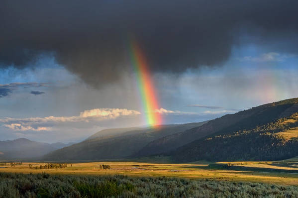 Horizontal Art Print featuring the photograph Rainbow Over Lamar Valley by Yvonne Baur