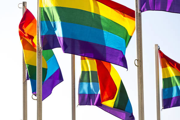 Horizontal Art Print featuring the photograph Rainbow Pride Flags Against White Background by Stuart Dee