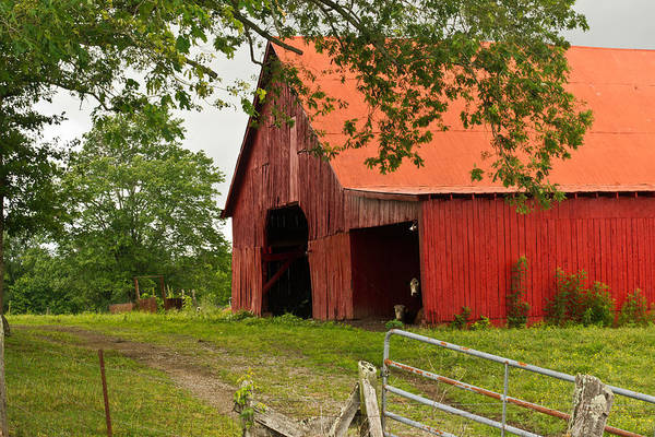Barn Art Print featuring the photograph Red Barn With Orange Roof 1 by Douglas Barnett