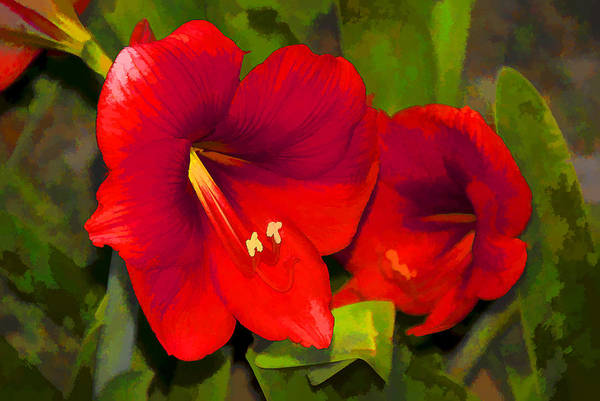 Wild Flowers Art Print featuring the photograph Red Flowers by Manolis Tsantakis