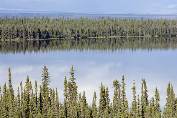 Lakes Art Print featuring the photograph Reflection In Willow Lake Near Copper by Rich Reid
