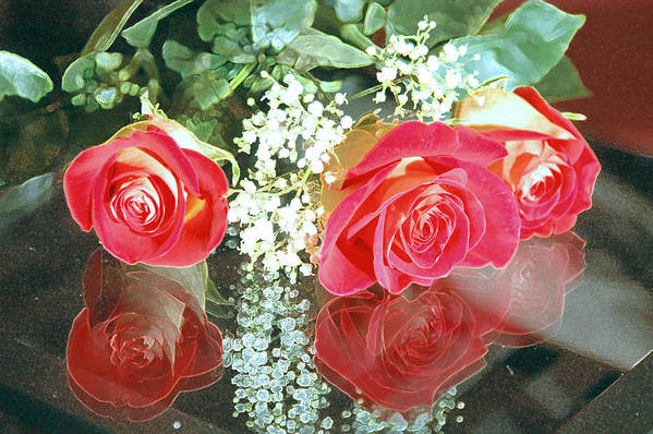 Roses Art Print featuring the photograph Reflection Red Roses by Maria isabel Villamonte