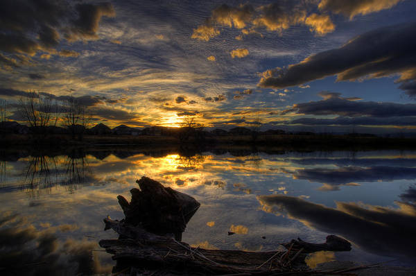 Pond Art Print featuring the photograph Reflections by Sam Neumann