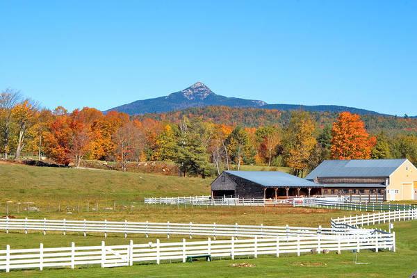 Mt. Chocorua Art Print featuring the photograph Remick Farm Autumn by Larry Landolfi