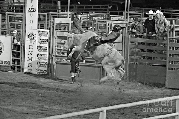 Bull Riding Art Print featuring the photograph Ride 'em Cowboy by Shawn Naranjo
