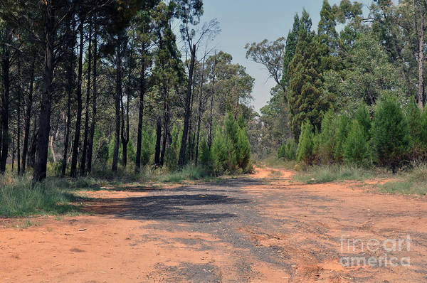 Road Art Print featuring the photograph Road To Nowhere by Joanne Kocwin
