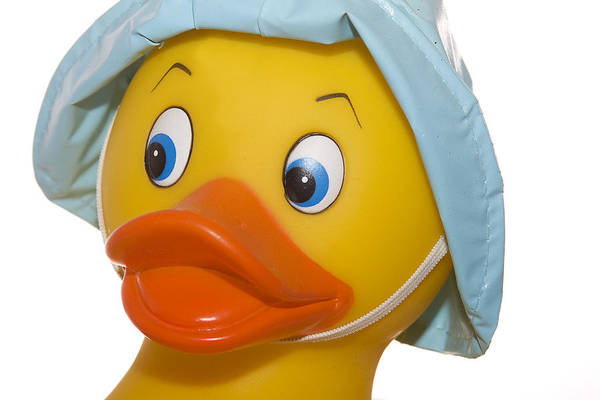 Rubber Art Print featuring the photograph Rubber Ducky Closeup by Trudy Wilkerson