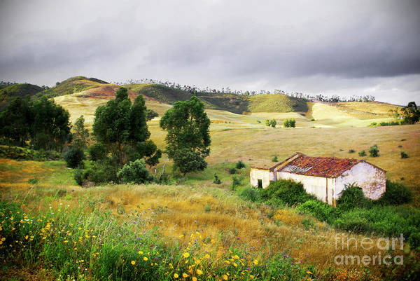 Calm Art Print featuring the photograph Ruin In Countryside by Carlos Caetano