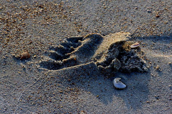 Footprint Art Print featuring the photograph Runners Mark by Jeffrey Levin