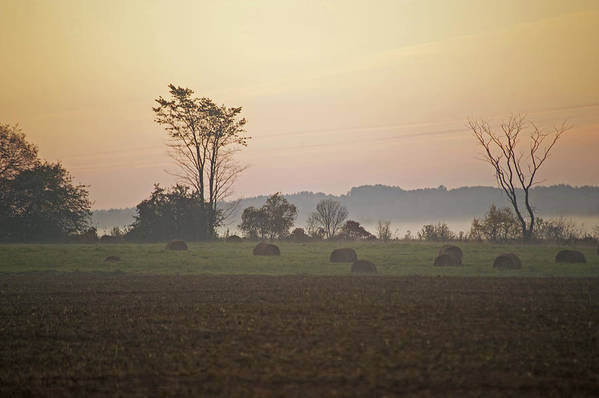 Sunrise Art Print featuring the photograph Rural Sunrise by Elaine Mikkelstrup