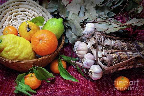 Arrangement Print featuring the photograph Rustic Still-life by Carlos Caetano
