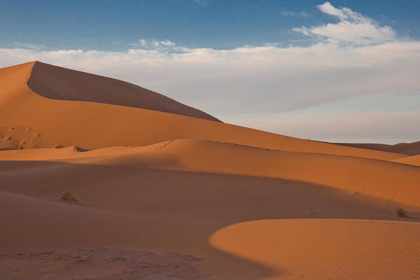 Sahara Art Print featuring the photograph Sahara Sanddunes by Leo Keijzer