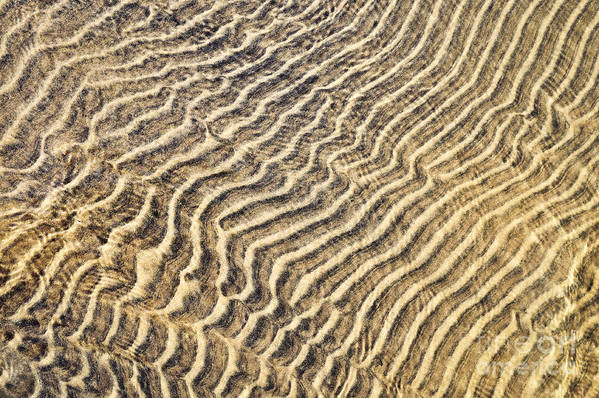 Sand Art Print featuring the photograph Sand Ripples In Shallow Water by Elena Elisseeva