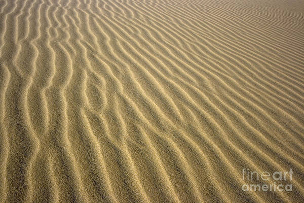 Texture Print featuring the photograph Sandhills by MotHaiBaPhoto Prints