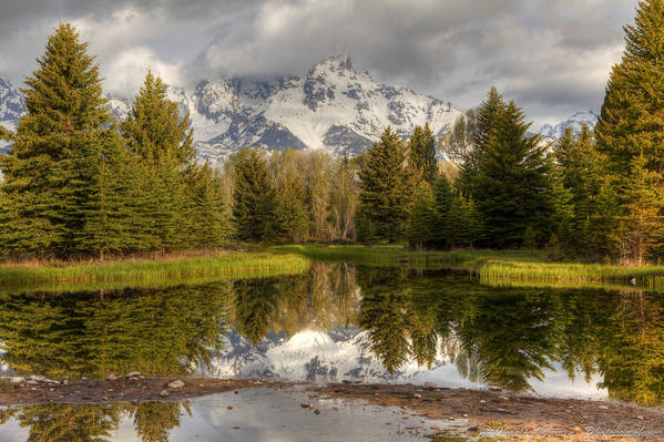 Grand Tetons Art Print featuring the photograph Schwabacher's Landing by Charles Warren