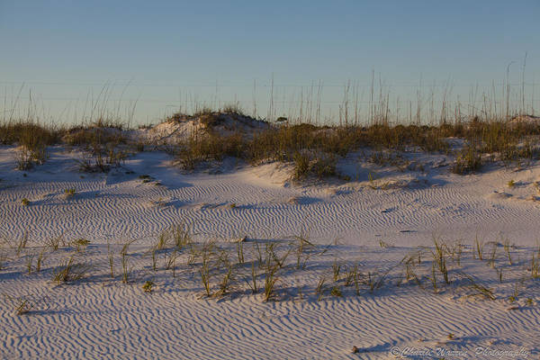Sand Dunes Art Print featuring the photograph Seaside Dunes 4 by Charles Warren