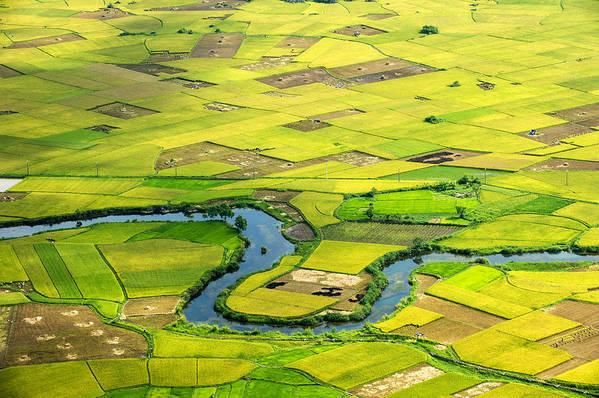 Horizontal Art Print featuring the photograph Season Grain by By Hoang Hai Thinh