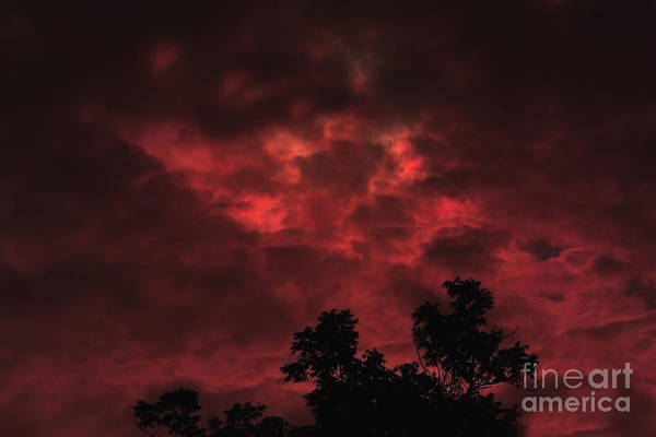 Sky Art Print featuring the photograph September Sky by Marjorie Imbeau