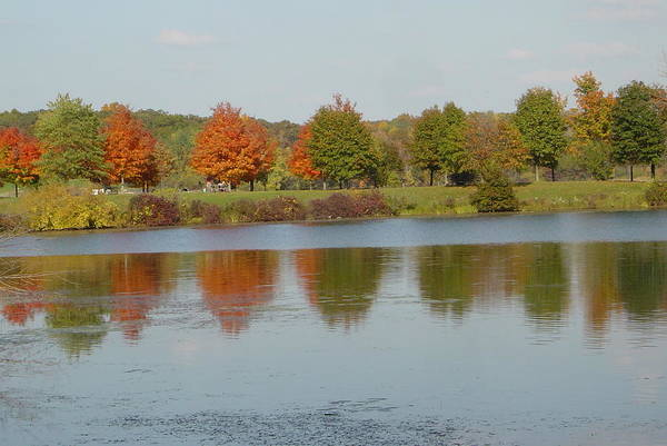 Photography Art Print featuring the photograph Seven Lakes State Park Mi by Margrit Schlatter