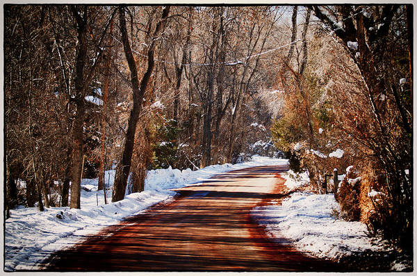 Road Print featuring the photograph Shadowy Path by Lisa Spencer