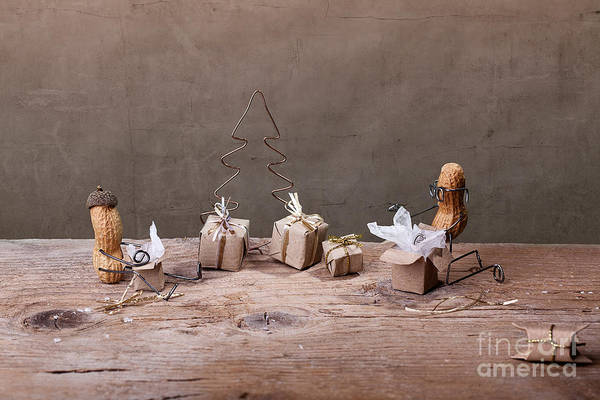 Peanut Art Print featuring the photograph Simple Things - Christmas 05 by Nailia Schwarz