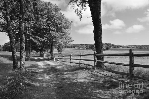 Old Wagon Road Art Print featuring the photograph Simple Times by Catherine Reusch Daley