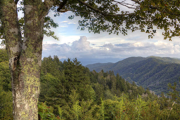 Smoky Mountains Art Print featuring the photograph Smoky Mountain Vista by Mike Aldridge