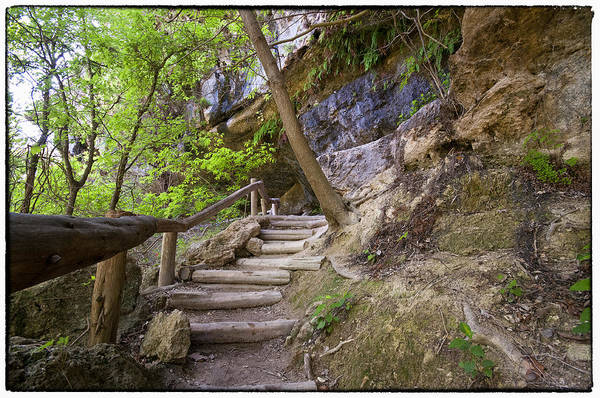 Hamilton Pool Art Print featuring the photograph Steps To The Cave by Lisa Spencer