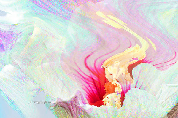 Flower Abstract Art Print featuring the photograph Summer Breeze by Regina Geoghan