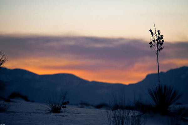 White Sands National Monument Art Print featuring the photograph Sunset At White Sands by Ralf Kaiser