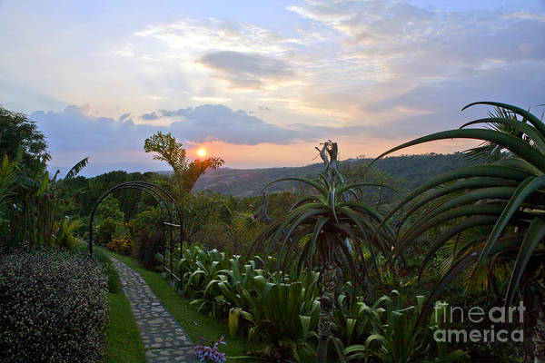 Costa Rica Art Print featuring the photograph Sunsetting Over Costa Rica by Madeline Ellis