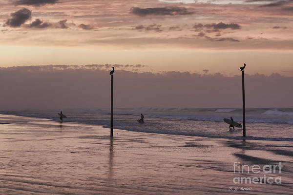 Surfers Art Print featuring the photograph Surfers Pelicans And Pink Sky by Deborah Benoit