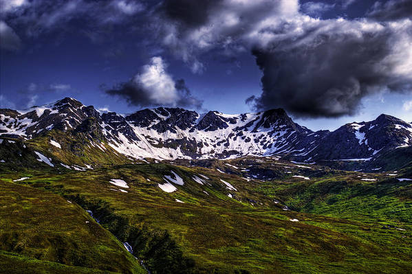 Landscape Art Print featuring the photograph Talkeetna Mountains In Summer by Michele Cornelius